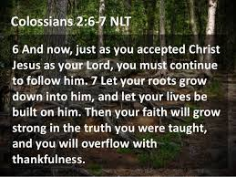colossians 2 6 to 7