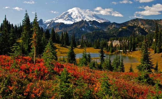 Mount-Rainier-Fall-Colors-Photo-Credit-Mike-Peters.jpg