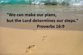 god directs his steps